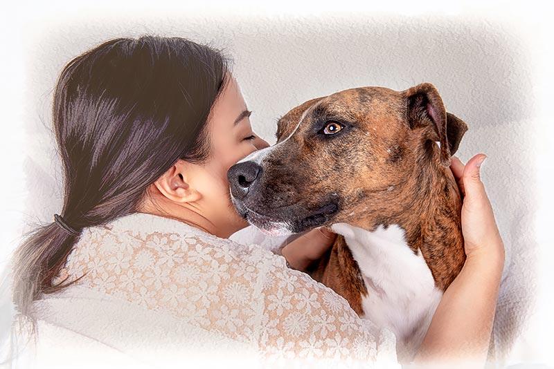 dog-soulmates-k9-photography-800px