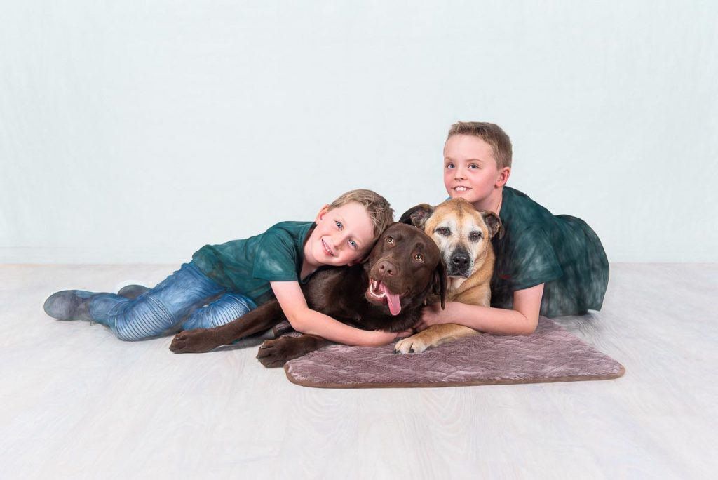 Gold Coast brisbane Pet Photography