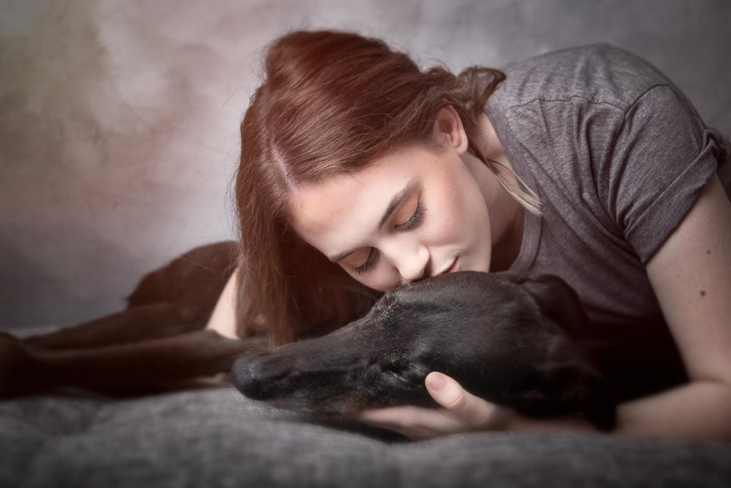 pets & people fine art pet photography by gold coast business k9 photography