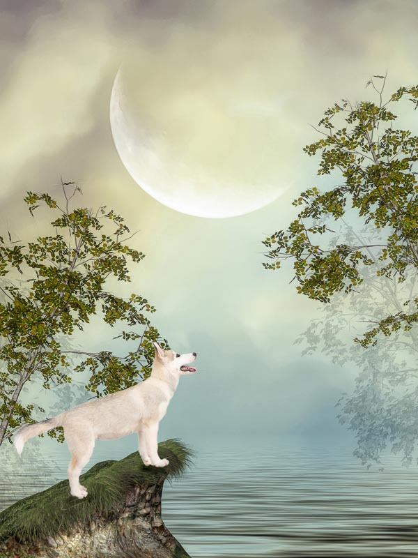 reverie series fantasy pet portrait of husky puppy under full moon with lacy leaves on trees
